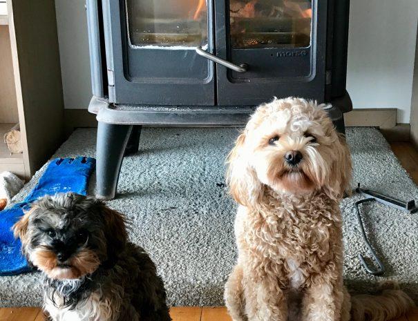 Calli & Nomia enjoying Seanook fire